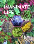 Inanimate Life