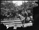Wadsworth on Horse, Geneseo, N.Y.